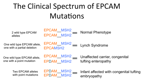 EPCAM